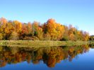 Kanata Beaver Pond Fall Picture
